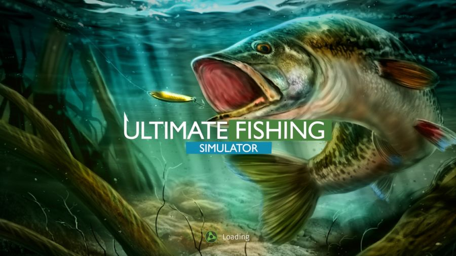 Ultimate Fishing Simulator how to catch channel catfish