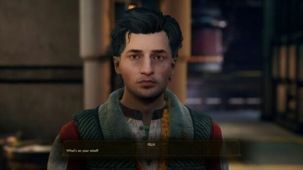 the outer worlds companions Felix